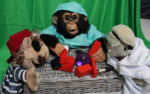 A pirate puppet, a chimpanzee in scrubs and a teddy bear in safety goggles and lab coat study wooden blocks, a purple lucite ball and various small cables and electronics on a small wicker table.
